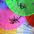 Chinese Parasols by Nora Martinez