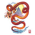 Chinese Red Dragon by Melissa A Benson