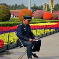 Chinese Security Guard Reads In Front Of Flower Display Beijing China by Imran Ahmed