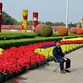 Chinese Security Guard Sits In Front Of Flower Display Beijing China by Imran Ahmed