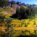 Chinook Pass by David Patterson