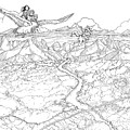 Chiricahua Mountains by Reynold Jay