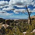 Chiricahua National Monument by David Thompson