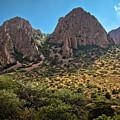 Chisos Mountain Range by Linda Unger