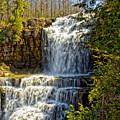 Chittenango Falls by Pat Carosone