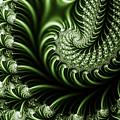 Chlorophyll by Clayton Bruster