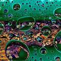 Chloroplasts by Ron Bissett