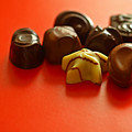 Chocolate Delight by Evelina Kremsdorf