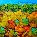 Chocolate Hills Pilippines by Vicki  Housel