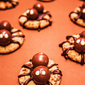 Chocolate Peanut Butter Spider Cookies by Jorgo Photography - Wall Art Gallery