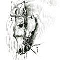 Chomping At Bit - Sketch1 by Shirley Heyn