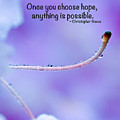 Choose Hope by Kerri Farley