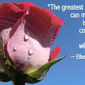 Choose Your Quote Choose Your Picture 24 by Michele Penn