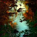 Chris' Creek Autumn Sunset by Martin Morehead
