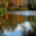 Chris Greene Lake - Reflections by Arlane Crump