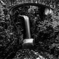 Christine Falls - Mount Rainer National Park - Bw by Stephen Stookey