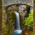 Christine Falls Through The Trees by Adam Jewell