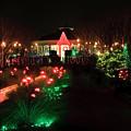 Christmas At Daniel Stowe Gardens by Jill Lang
