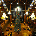 Christmas At The Lodge by David Lee Thompson