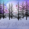 Christmas Bare Trees by Mihaela Pater