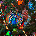 Christmas Bling #1 by Rich Walter