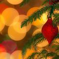 Christmas Bokeh by Vicki Stansbury