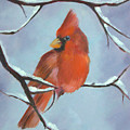 Christmas Cardinal by Jean Scanlin Wright