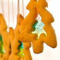 Christmas Cookies by Lisa Knechtel