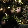 Christmas by Erick Kim