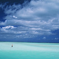 Christmas Island, Bone Fi by Ron Dahlquist - Printscapes