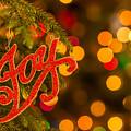 Christmas Joy by Vicki Stansbury