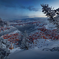 Christmas Light by Edgars Erglis