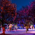 Christmas Lights At Locomotive Park by Brad Stinson