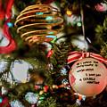 Christmas Martini 4389 by Doug Berry