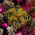 Christmas Ornament 3 by Krystal Billett