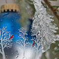 Christmas Ornament With Ice by Jim DeLillo