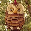 Christmas Owl by Nikita Zabowski