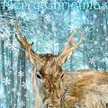 Christmas Reindeer by Angeles M Pomata