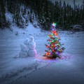 Christmas Spirit At Grouse Creek by Robert Hosea