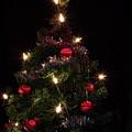 Christmas Tree 2 by Esko Lindell