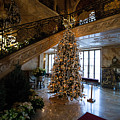 Christmas Tree And Staircase Marble House Newport Rhode Island by Jason O Watson