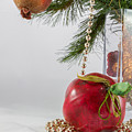 Christmas Tree Branch And Decoration In A Vase by Iordanis Pallikaras