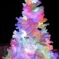 Christmas Tree by D Hackett