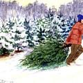 Christmas Tree Farm by Laura Tasheiko