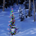 Christmas Tree In Snow by Utah Images