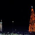 Christmas Tree San Salvador 1 by Totto Ponce