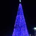 Christmas Tree San Salvador 2 by Totto Ponce