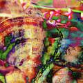 Chromatism by Karen Smith