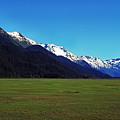 Chugach Mountains Green Plain by Thomas R Fletcher