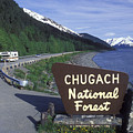 Chugach National Forest Sign And Scenic by Rich Reid